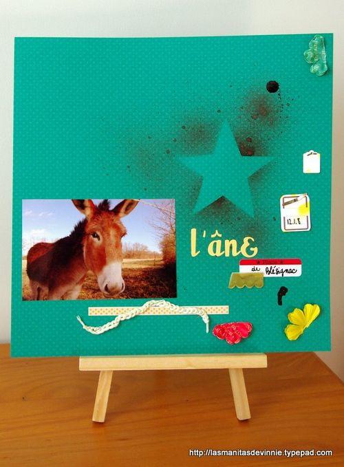 2009.02 l'âne de blésignac (2)